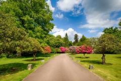 Driveway into Chilworth Manor